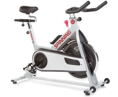Home Portable Stationary Bike In Black And White Finish