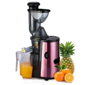 Best Masticating Juicer - Reviews Of Fruit And veg Juicers