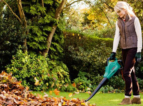 Woman With Small Leaf Blower In Hand