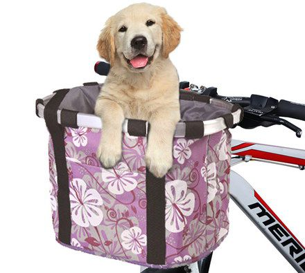 Pet Bike Carrier With Labrador