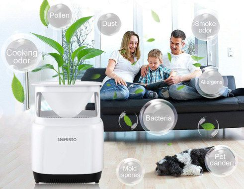 Plug In Air Purifier With Black Base