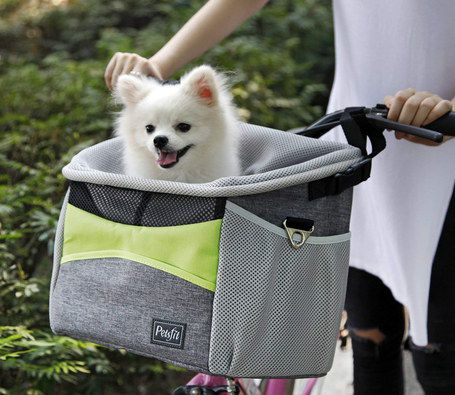 Bicycle Pet Carrier With White Puppy