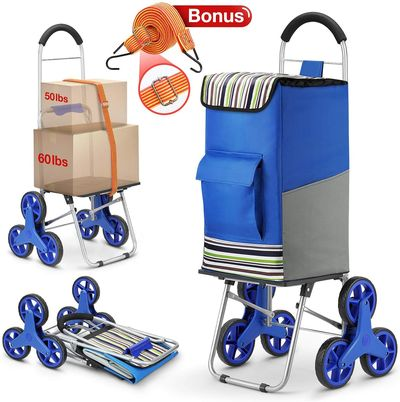 Folding Granny Trolley With Blue Exterior