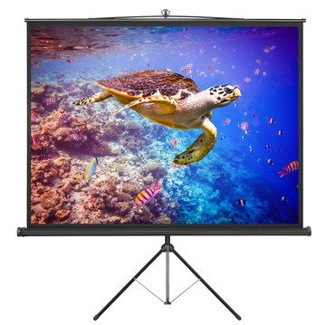 Pull Down Projector Screen With Black Tripod Legs
